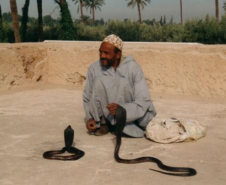 Marokko-18.jpg