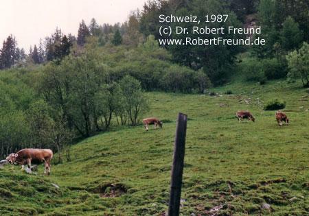 Schweiz-1987.jpg