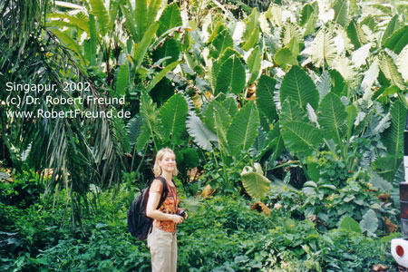 Singapur-2002.jpg