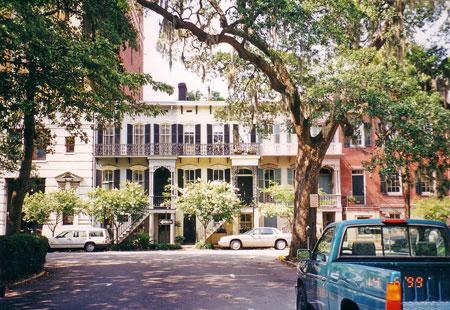 Savannah-01.jpg