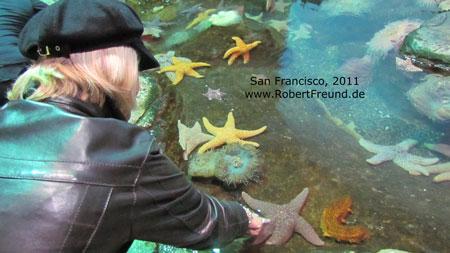 San-Francisco-25.jpg