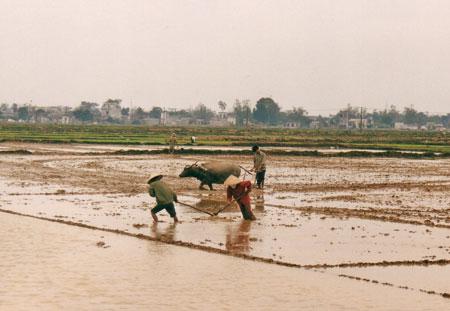 Vietnam-08.jpg