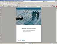 bitkom-2007-leitfragen-wm.jpg