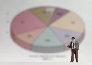 statistik-2013